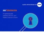 "AWS Patentservice – Projektbeispiel ""veoovibes"""